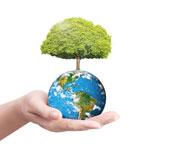 Formation ASCA Planète Eco Responable